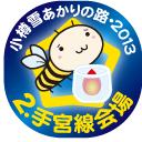 2.手宮線会場・小樽雪あかりの路2013