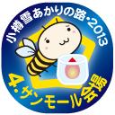 4.サンモール会場・小樽雪あかりの路2013