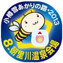 8.朝里川温泉会場・小樽雪あかりの路2013
