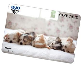 もらって嬉しい「QUOカード500円分」10名様にプレゼント